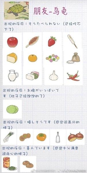 tortoise-foods