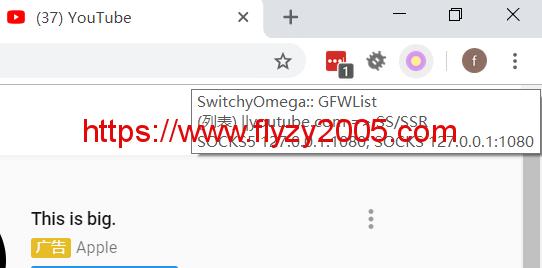switchyomega-youtube